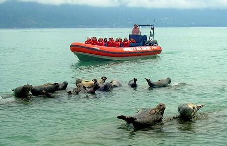 2016 - Horseshoe Bay - Boat Bumper | Horseshoe Bay is not ...  |Horseshoe Bay Boat